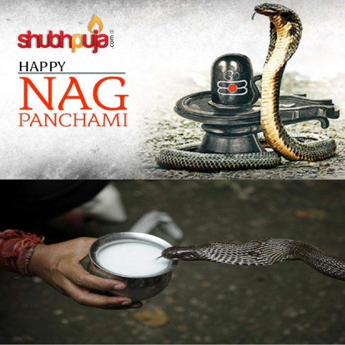 Shubhpuja.com happy nag panchami